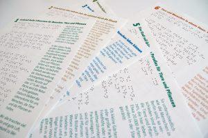 Braille und einfache Sprache in einem Layout