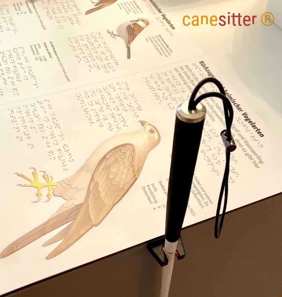 Ein Canesitter hält den Blindenlangstock